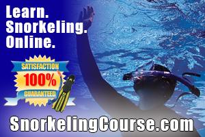 SnorkelingCourse.com